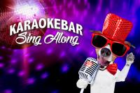 Karaokebar Sing Along